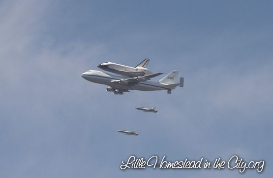 The shuttle Endeavor's final journey, September 2012. Little Homestead In the City - The Urban Homestead Journal