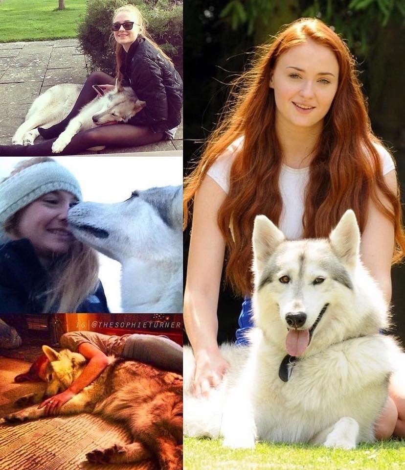 sophie turner dog