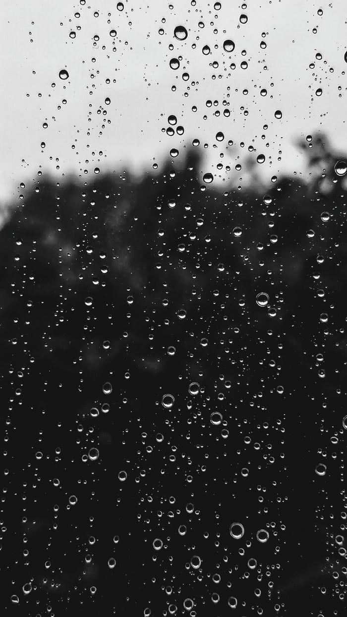 350 Rain Pictures Hd Download Free Images Stock Photos On Unsplash En 2020 Fondos Para Fotos Tumblr Fotos En La Lluvia Fotografia De Lluvia