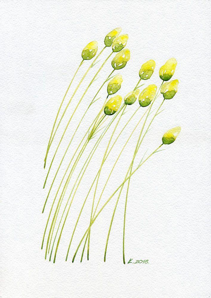 Spring, plants, herbs, flowers, Watercolor Original Painting Art, Quick sketch  #Realism  Natalia Komisarova   NatalieStorePainting     You can also find me on:    EBAY: http://stores.ebay.com/NatalieStorePainting     ETSY: https://www.etsy.com/shop/NatalieStorePainting    FACEBOOK: https://www.facebook.com/komisarova.art    #NataliePaintings #Natalie #Artist #NatalieStorePainting #Painting #Watercolor