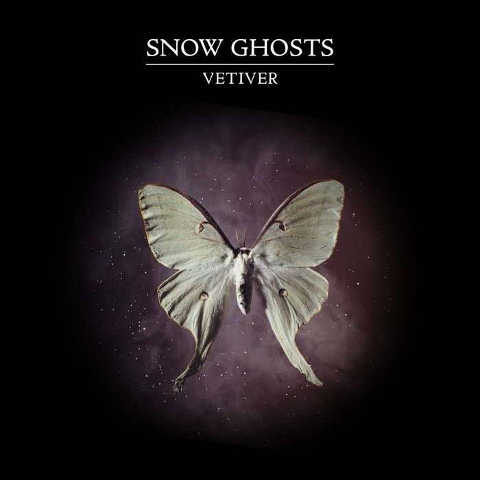 Vetiver by Snow Ghosts
