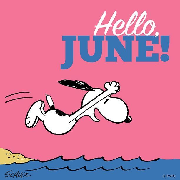 It's JUNE today! | Snoopy love, Snoopy, Snoopy and woodstock