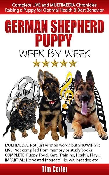 German Shepherd Puppy Week By Week Complete Live And Multimedia