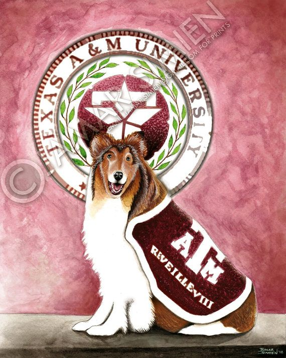 Texas A Mascot Reveille Viii Watercolor Painting By Jamar Simien Https Www Etsy Com Listing 117606263 Texas A M Artwor Artwork College Art Texas Artwork