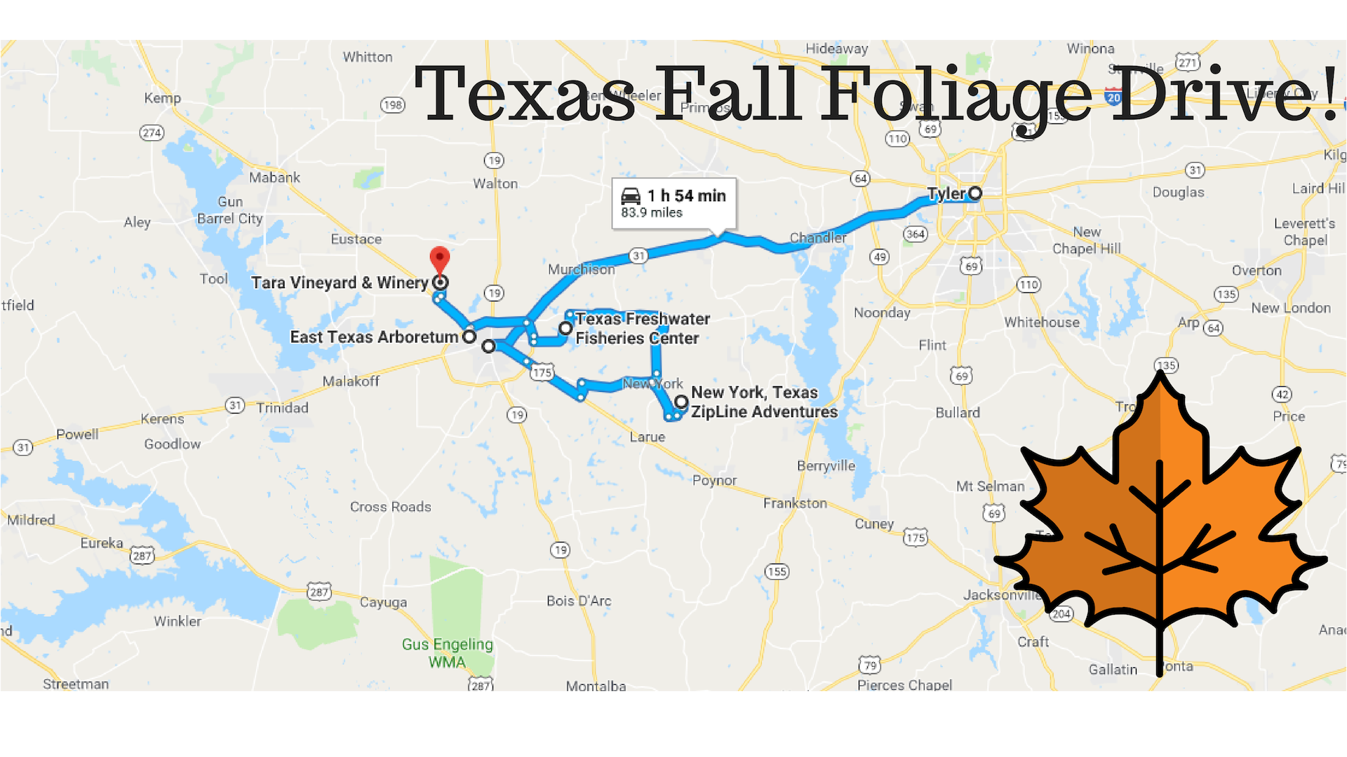 This 2 Hour Drive Through Texas Is The Best Way To See This Year S Fall Colors Fall Foliage Drives Autumn Drives Fall Travel