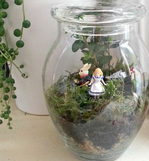 Terrarium alice in wonderland terrarium little lands pinterest awesome much and by for Alice in wonderland fairy garden