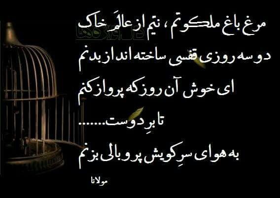 مولانا Persian Quotes Persian Poem Persian Poetry