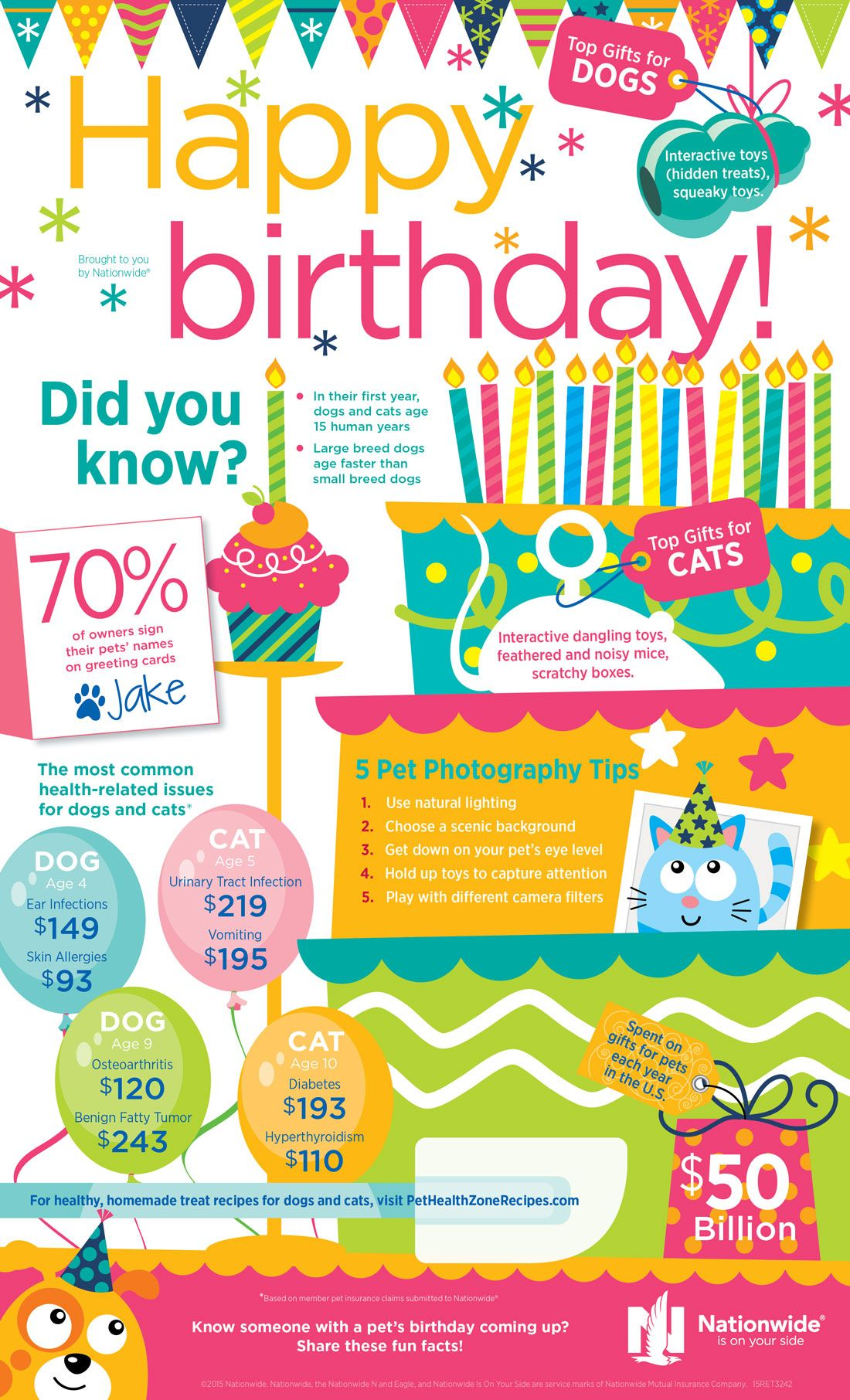 Cool Info Graphic About Pets Birthdays And Health Cat Nutrition Pet Photography Tips Animal Birthday