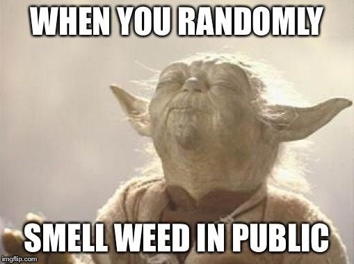 6 Funniest All Time Favorite Weed Memes That CBD Brand Share 5