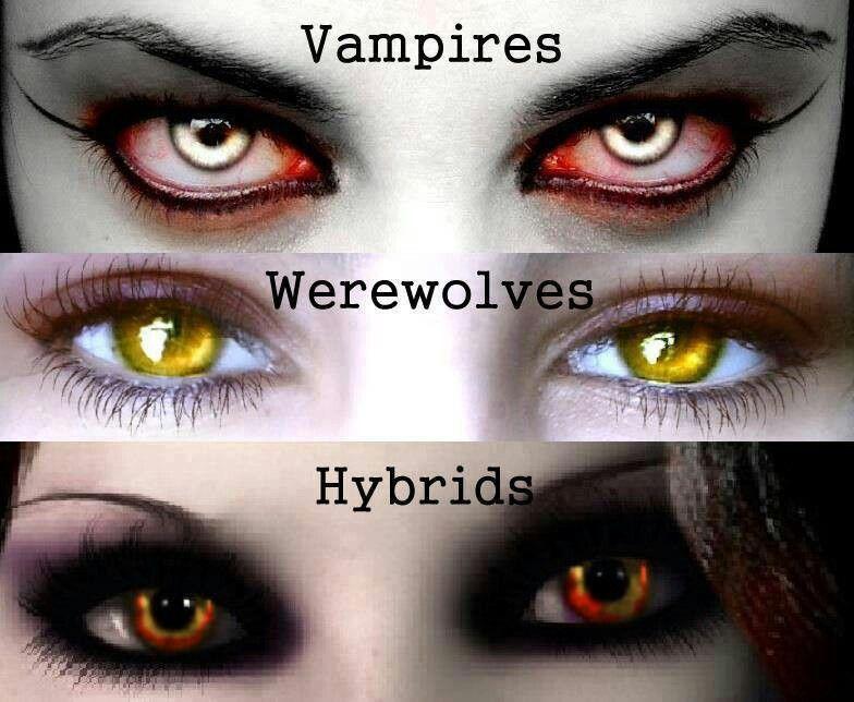 Vampires, werewolves & hybrids