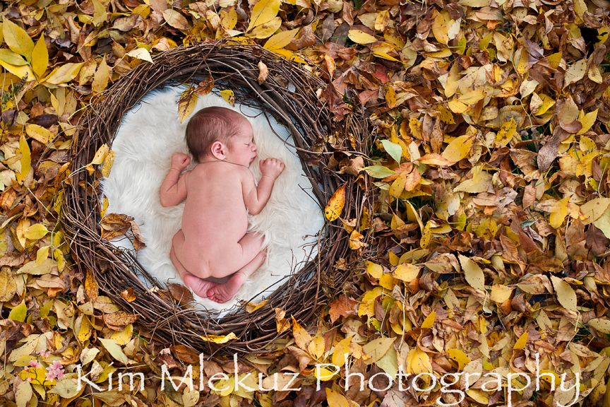 Fall baby photography burlington baby photographer kai oakville newborn photographer