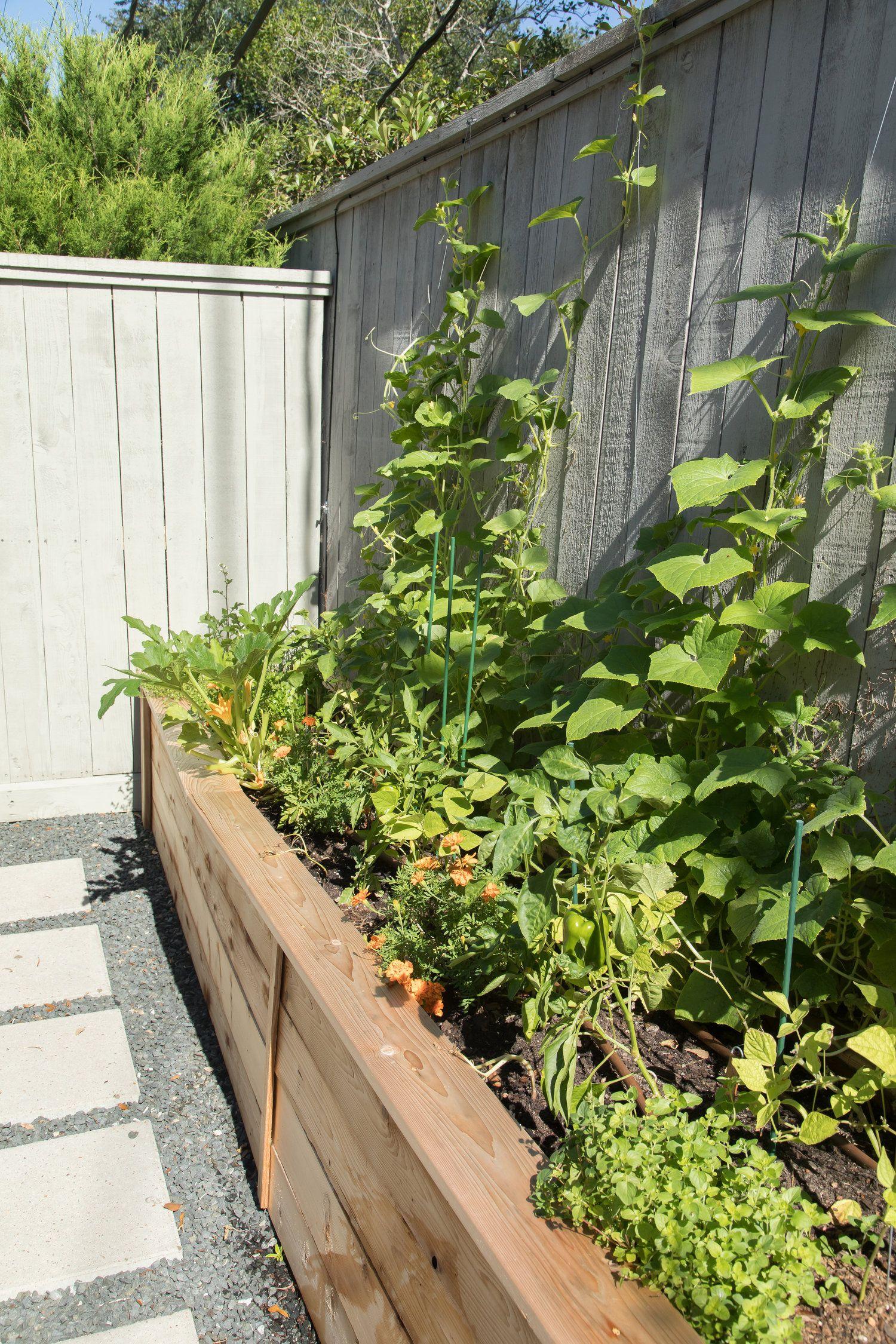 a chef s kitchen garden garden garden design garden spaces on kitchen garden id=17851
