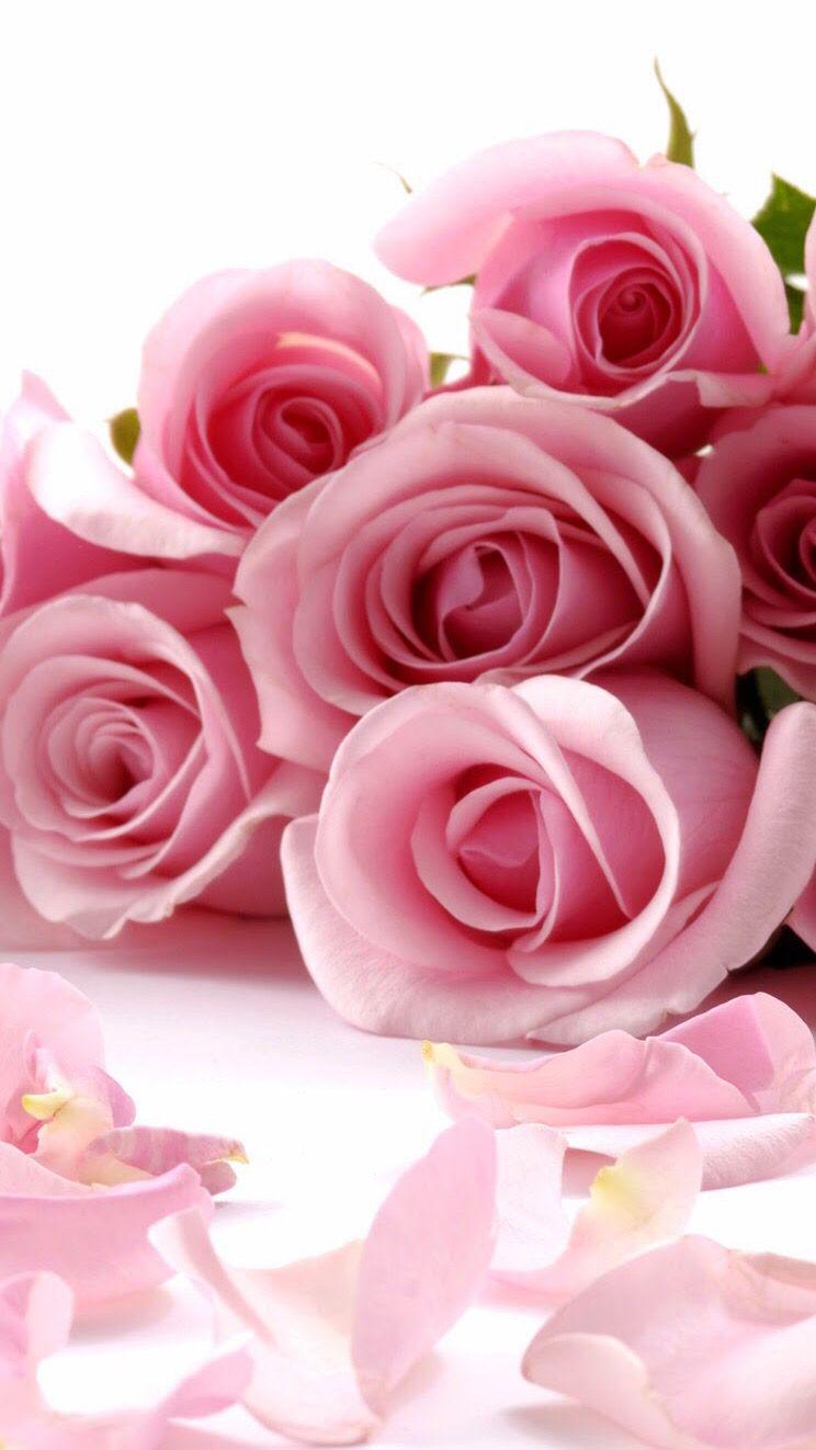 Tovaglioli Di Carta Fiore Inglese Fata Rose Ideale Home Range Ihr