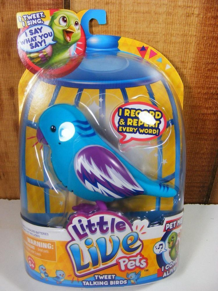 Little Live Birds Cool Cookie Pets Tweet Talking Sing Little Live Pets Pets Interactive Toys