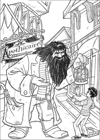 Hagrid Offers Parrot To Harry Potter Coloring Page