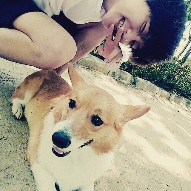 "Baekhyun - ""우리몽룡이랑산책! #우리변몽룡을소개합니다#웰시코기#3살#몽룡이가코가왕따시만하게나왔네..#실물얼짱"" | 150519 baekhyunee_exo Instagram Update"