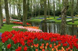 AAS Display Garden At Norfolk Botanical Gardens, Norfolk, VA