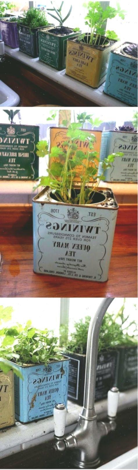 Photo of 14 Brilliant DIY Indoor Herb Garden Ideas | The gardening glove #GartenIdeendiy