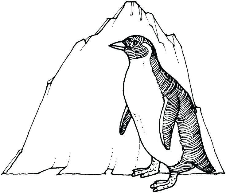 DIY Penguin Coloring Pages Ideas For Children | Penguin ...
