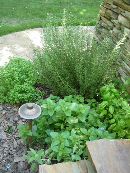 outdoor kitchen deck herb garden after lying in the gardens or soaking in the hot tub its on outdoor kitchen herb garden id=15932