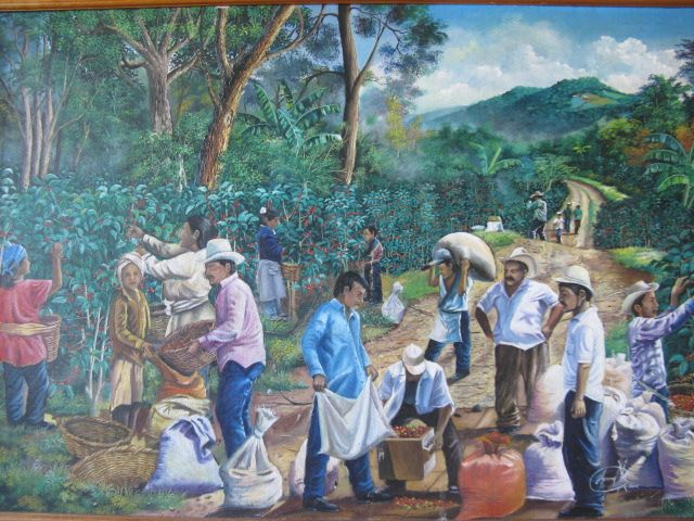 Women Coffee Picking Paintings On Island Google Search Viết