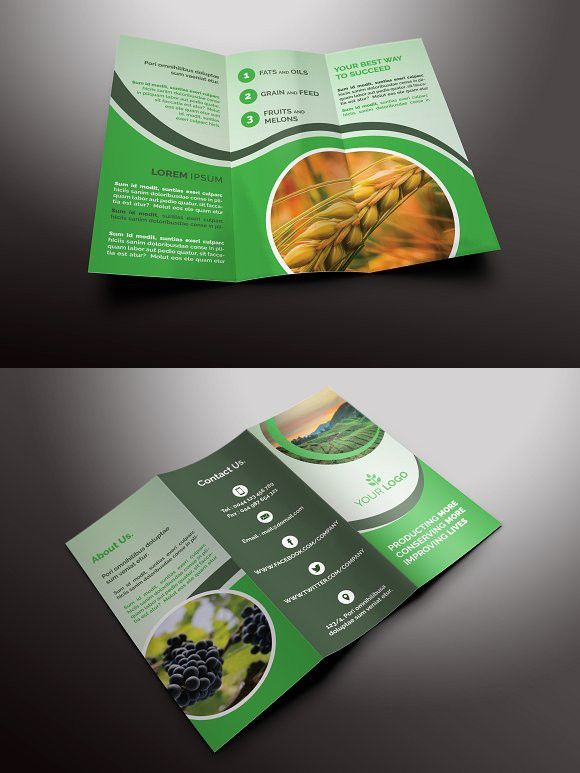 agriculture tri fold brochures brochure infographic agriculture