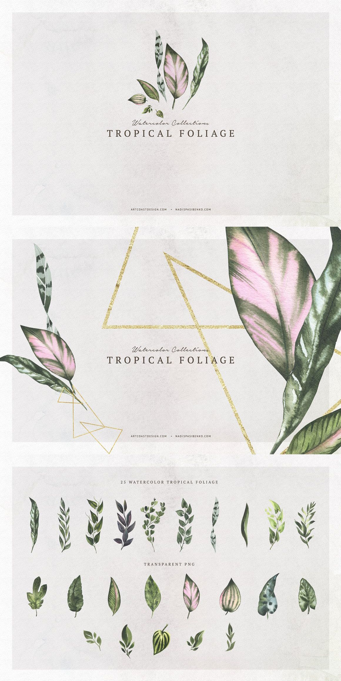 Watercolor Tropical Foliage Tropical Foliage Watercolor