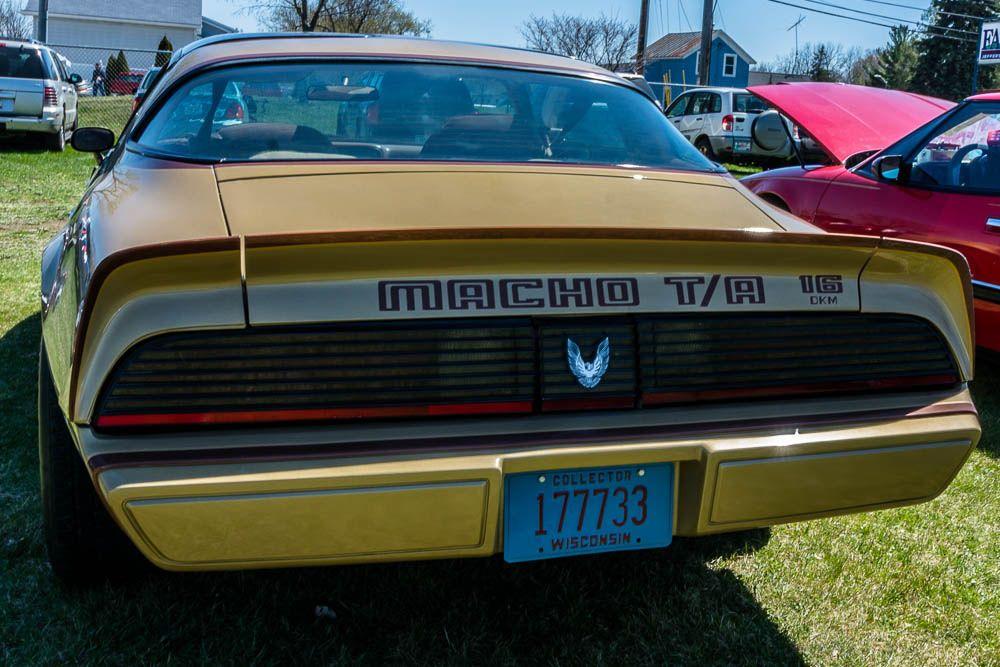 1979 pontiac firebird macho transam pontiac firebird