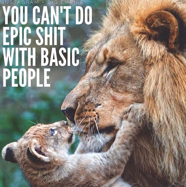 """""""You can't do epic shit with basic people."""""""
