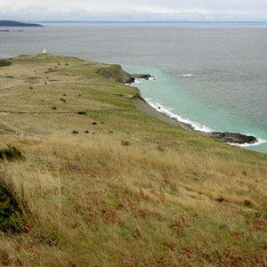Mount Finlayson