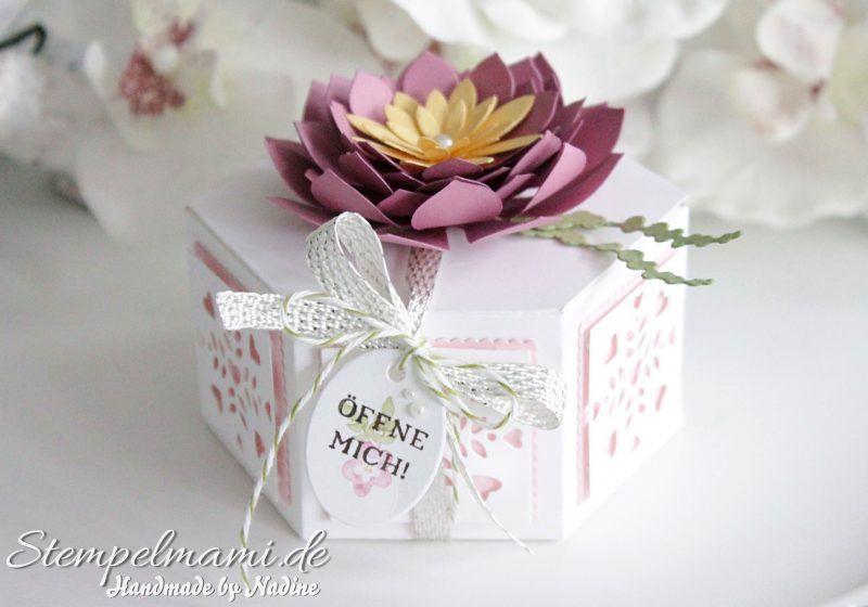 Stampin Up - Fensterschachtel - Thinlits Formen Fensterschachtel - Sukkulente - Sukkulenten Blume - Sechseck Schachtel - Box - Goodie - Give Away - Schachtel - Verpackung - Geschenk - Stempelset Fenster zum Glück - Big Shot ☆ Stempelmami