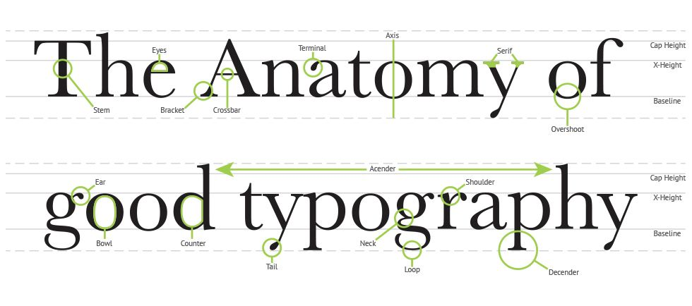 Visual Typography Anatomy Great Design Collection Gr 122 Ol4