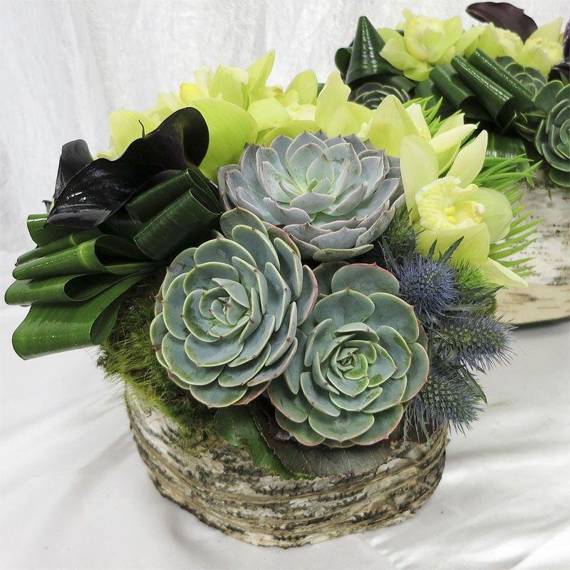 Succulent Arrangement with Cymbidium Orchids Green LUV