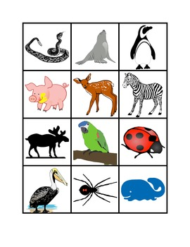 classifying animals 90 picture word cards for sorting vocabulary reading classifying. Black Bedroom Furniture Sets. Home Design Ideas