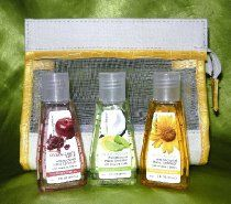 Essence Of Beauty 4 Piece Antibacterial Hand Sanitizer And