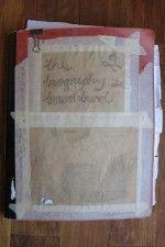Bowerbird- The Society inc. by Sibella Court