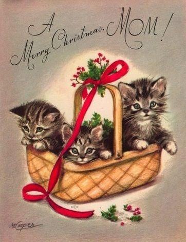 Kitten Christmas Cards.Marjorie Cooper Christmas Card Kittens Christmas Cats