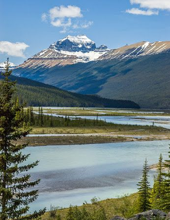 The Saskatchewan River flows past Mount Saskatchewan, in Banff National Park, Alberta, Canada.