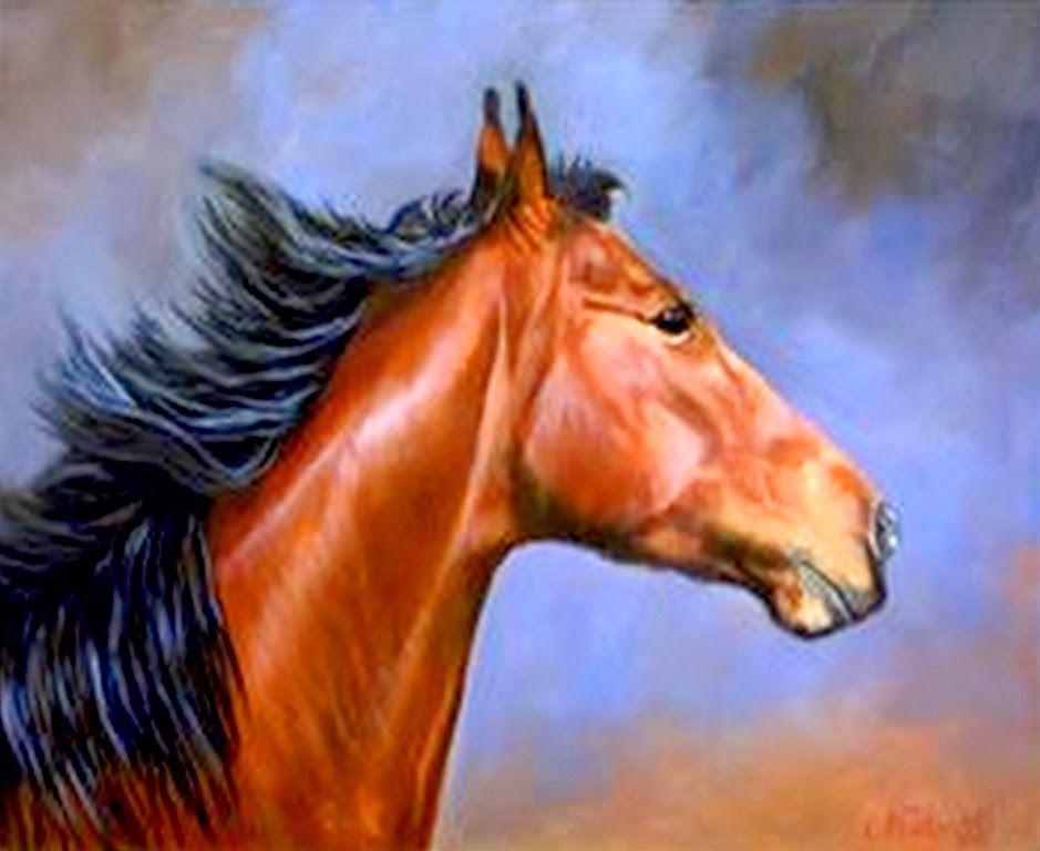 Retratos cabezas caballos pinturas pintura animales caballo pinterest caballos retrato y - Cabezas animales tela ...