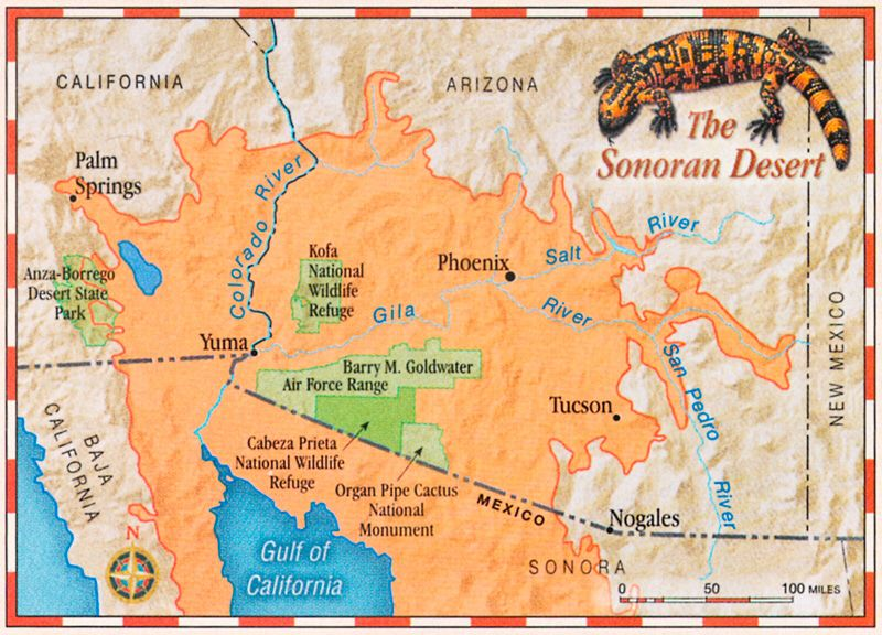 Sonoran Desert map | Arizona | Desert map, Gila monster, Deserts