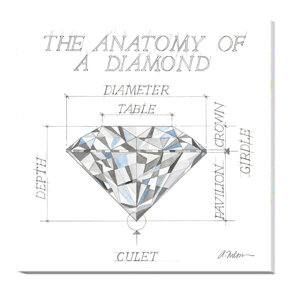 Anatomy Of A Diamond Printed On Canvas Female Form Pinterest