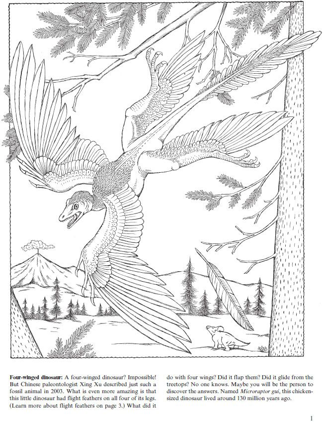 Flying Dinosaurs Coloring Book Feathered Reptiles And Ancient