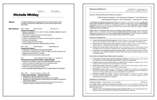 Corporate Trainer Resume Example Annual Report Sample