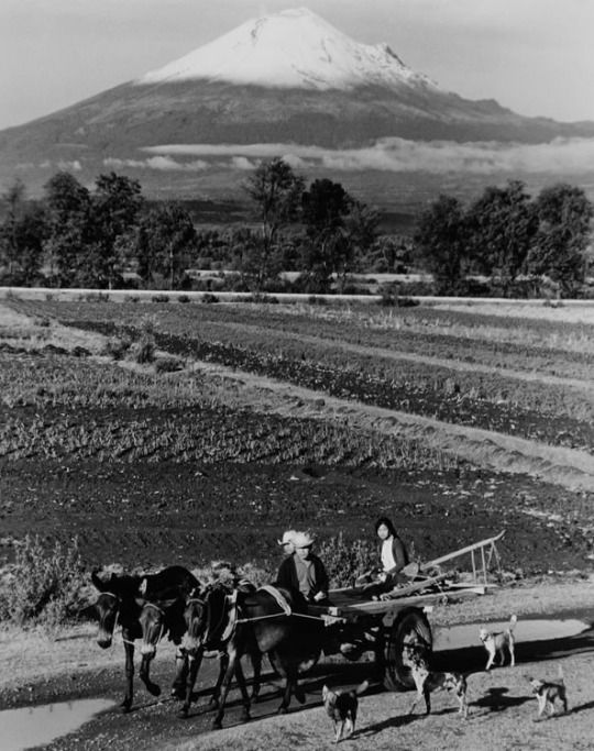 Paisaje con volcán, Carretera a Puebla, México, 1964  Photo by Rodrigo Moya