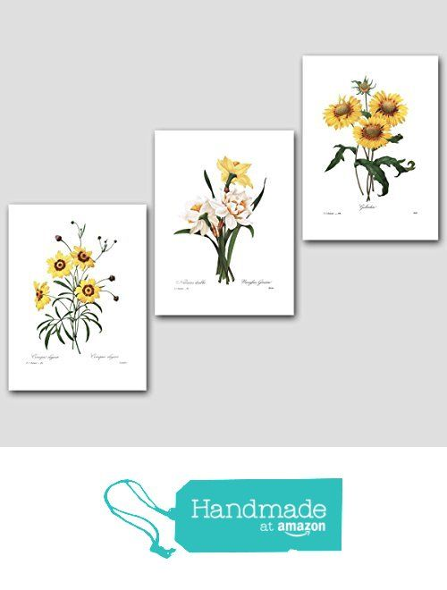 Botanical Art Daffodil Sunflower 8x10 Unframed Set of 3 Yellow Flower Prints, Redoute French Home Wall Decor