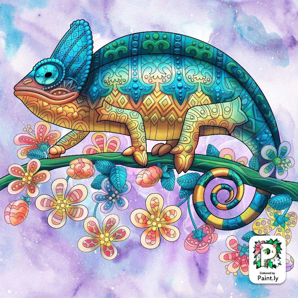 Pin Van Stormii Op Colorful Color By Number Dierenrijk Tekenen Ogen