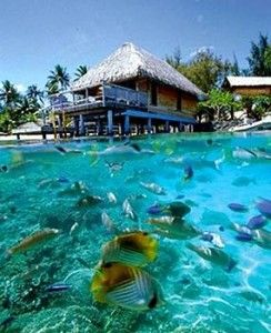 Bora Cheap All Inclusive Vacation Packages