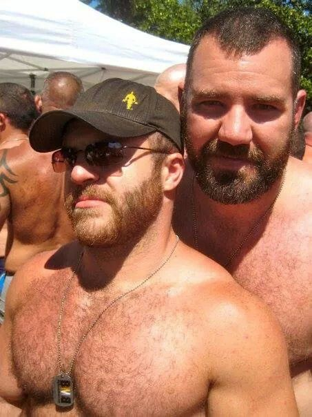 gay bears gay haze