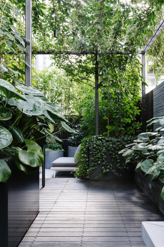 terrace garden garden This innercity terrace garden