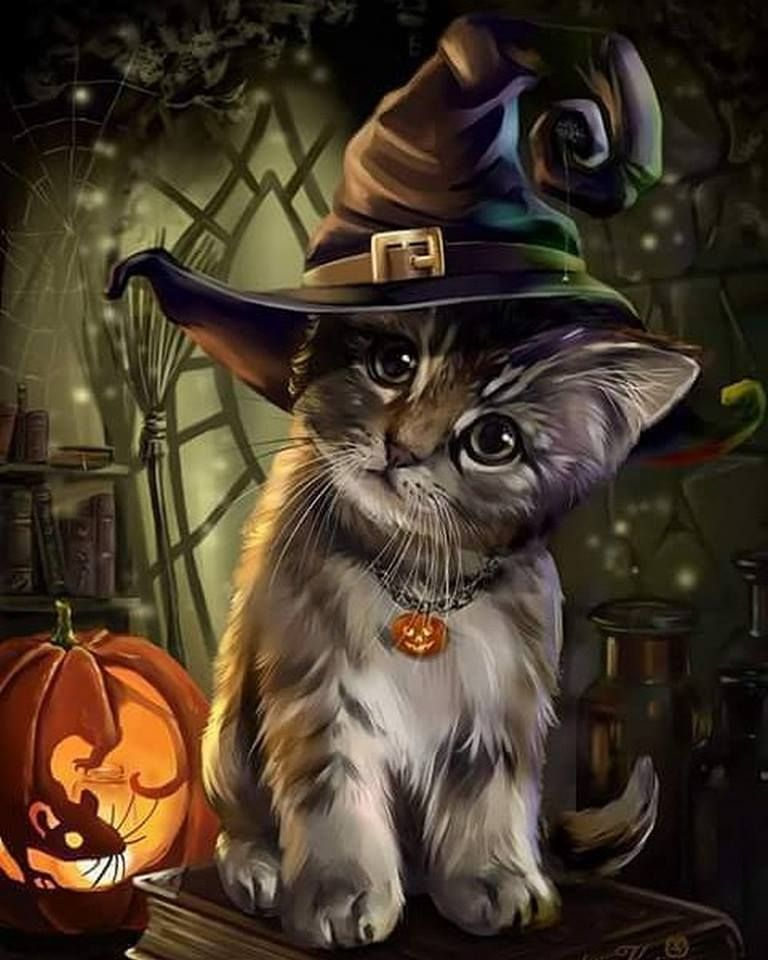 Halloween Cat Halloween Art Halloween Wallpaper Halloween Pictures